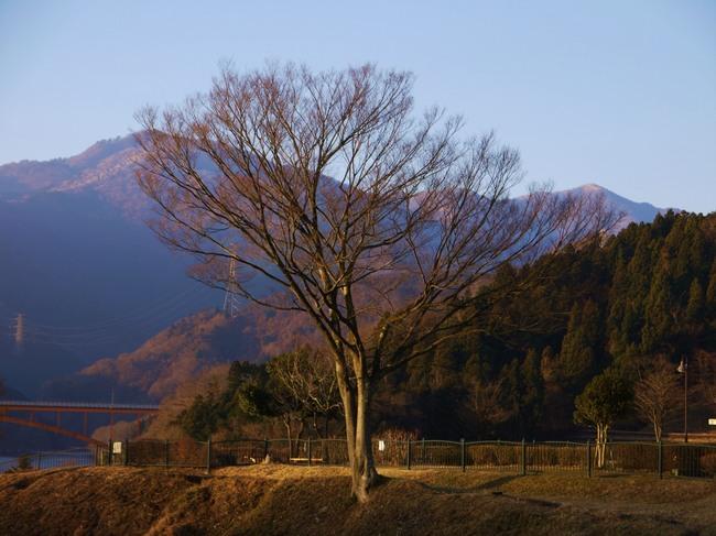 0003_鳥屋原から1000m級の山.JPG