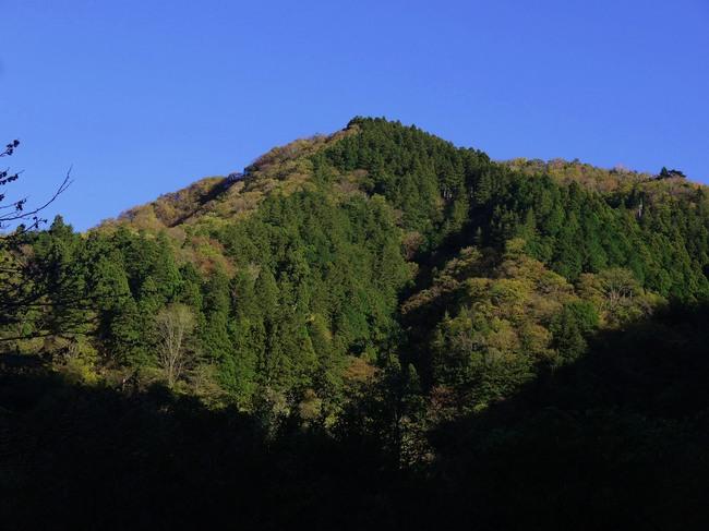 0005_半原越の静かな山.JPG
