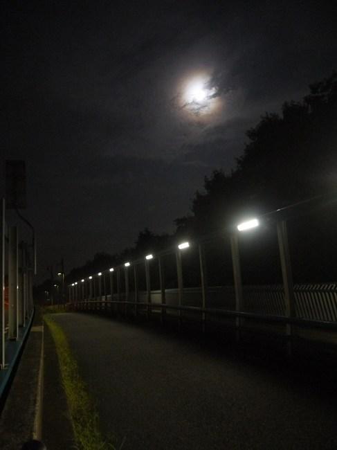0253_中秋の名月.JPG