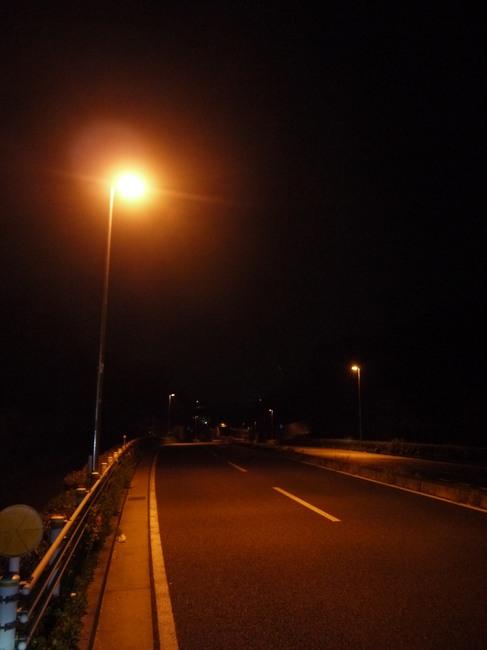 0343_舞岡丘陵の静かな道.JPG