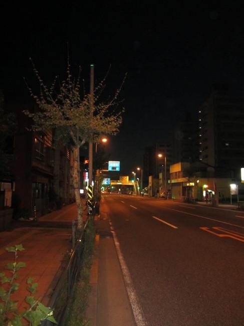 0402_鶴見国道15号.JPG