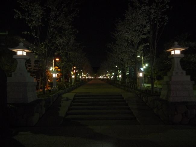 0409_鶴岡八幡宮桜蔓.JPG