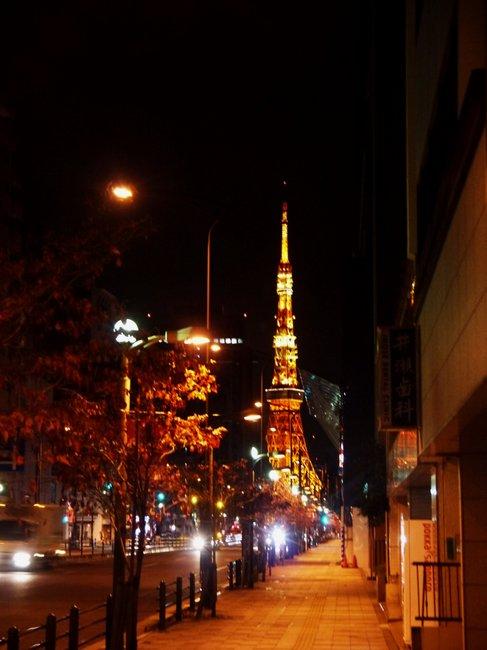 0441_東京タワーの光.JPG