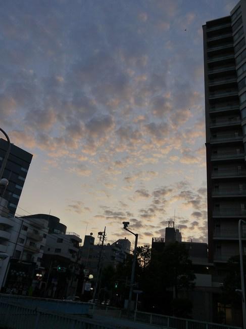 0445_カン七朝焼け.JPG