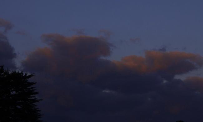 0509_雲が赤く染まっている.JPG