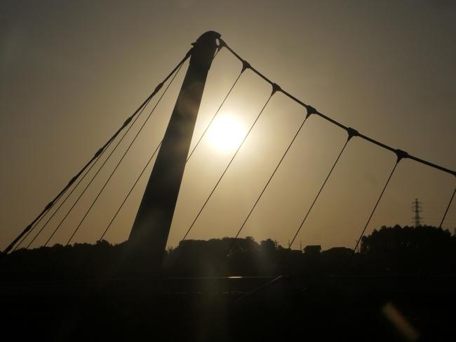 0523_鷺踊り橋3.JPG