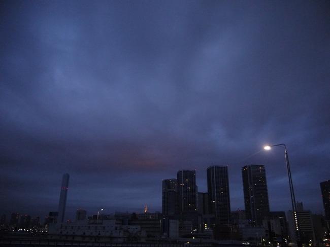 0528_遠く東京タワー.JPG
