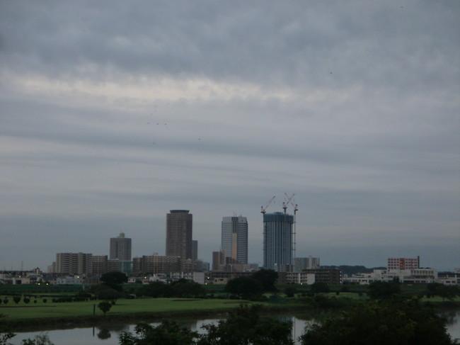 0531_多摩サイから武蔵小杉.JPG