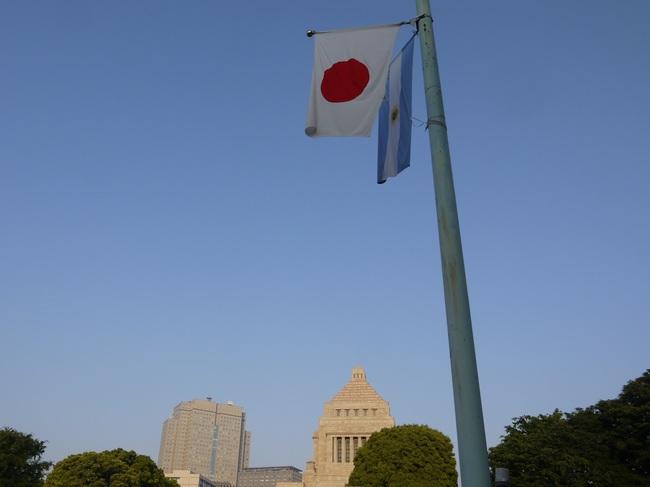 0533_アルゼンチン国旗.JPG