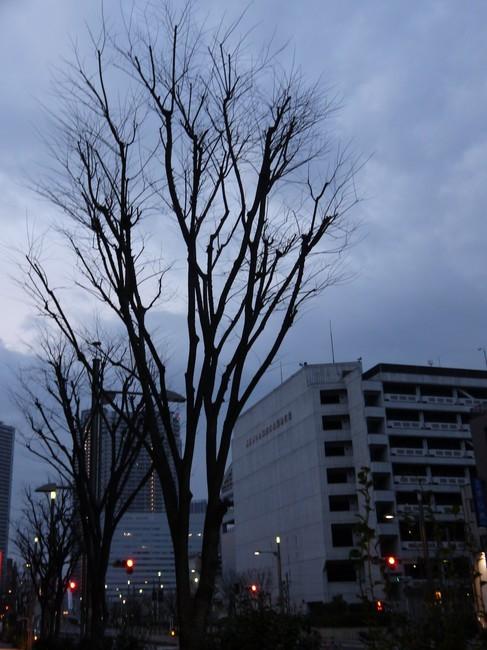 0539_東京湾一周の決意.JPG