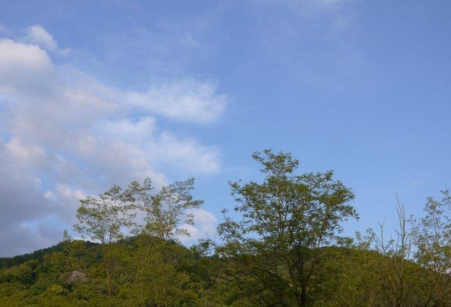 0551_宿の青い空.JPG