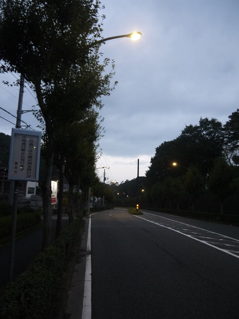 0554_町田街道.JPG