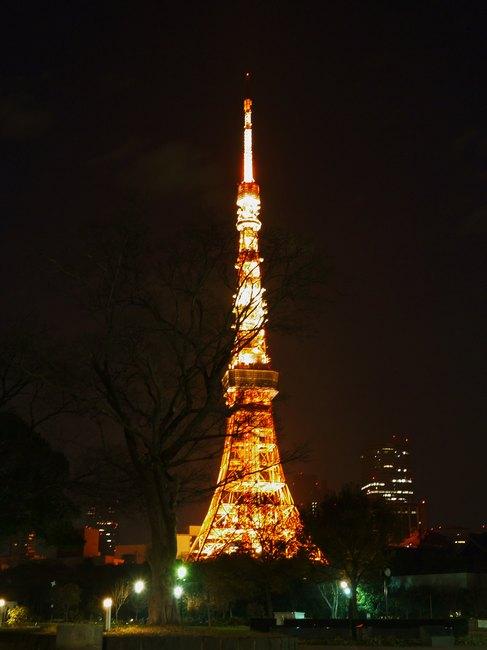0555_芝公園より東京ラワー.JPG