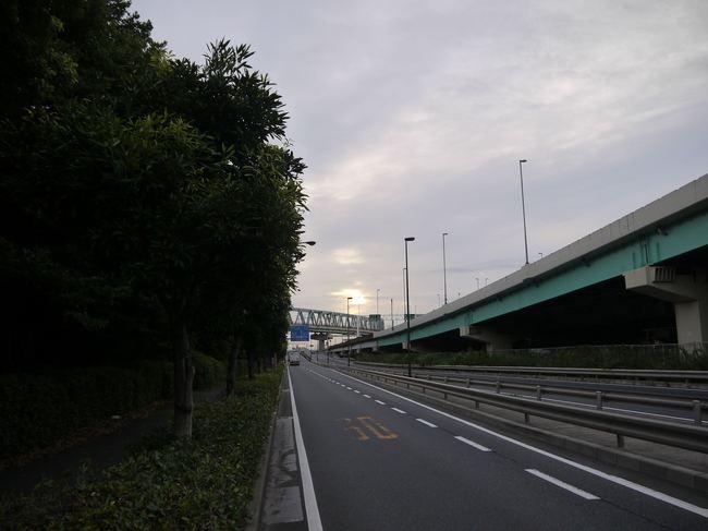 0557_国道357号線.JPG
