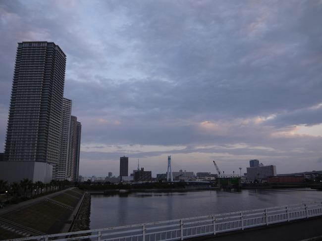 0559_東京スカイツリー遠望.JPG