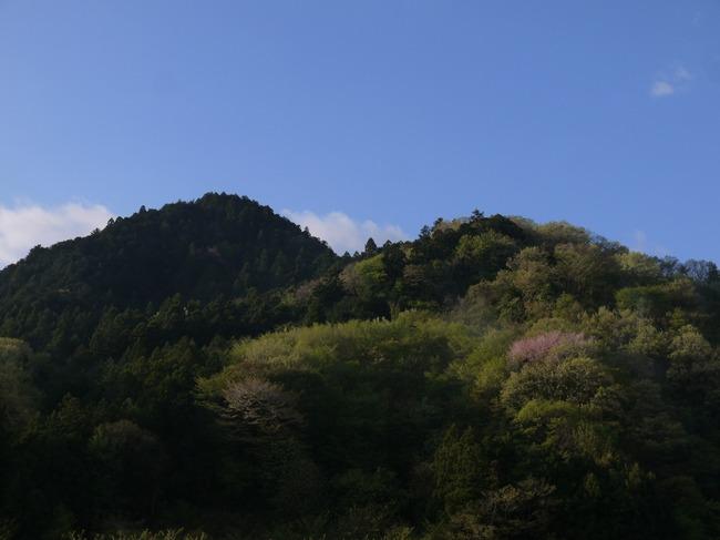 0608_いつの間にか新緑が芽吹く山々.JPG