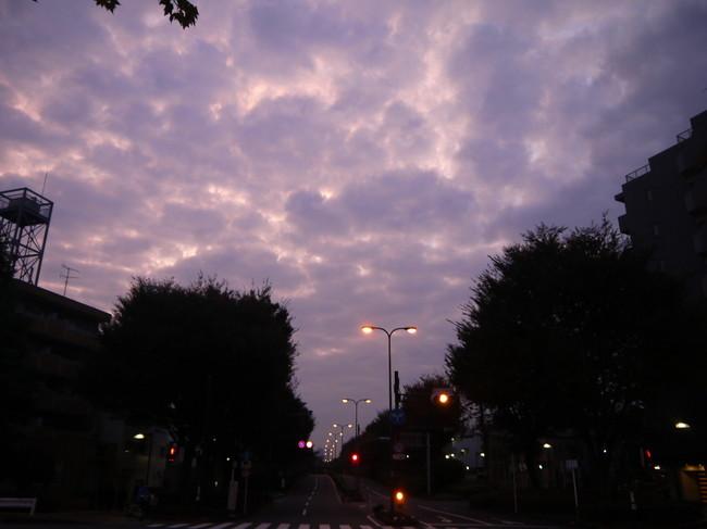 0608_板橋で朝焼け.JPG