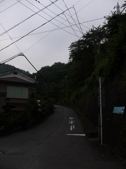 0609_大野山への登り.JPG