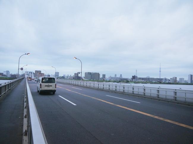 0610_葛西橋より東京スカイツリー.JPG