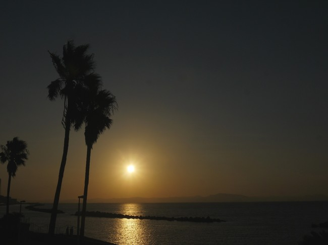 0615_三浦海岸残照.JPG