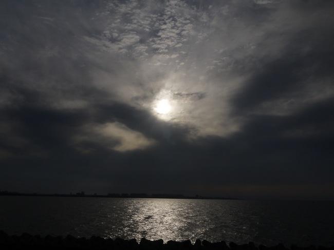 0619_若洲海浜公園に到着.JPG