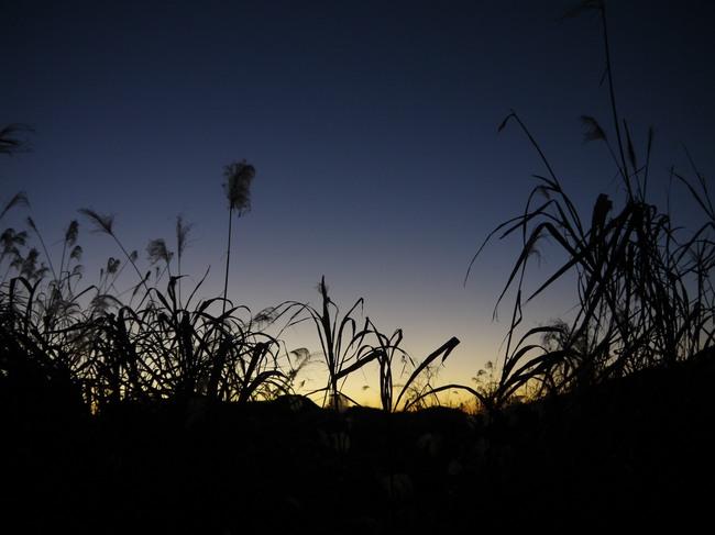 0622_東の空の朝焼け.JPG