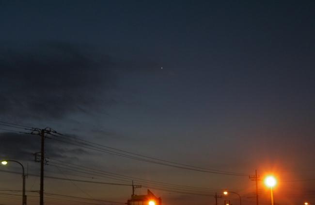 0626_宵の明星.JPG