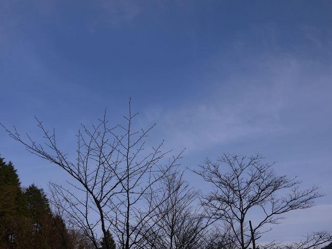 0640_気が付けば青空.JPG
