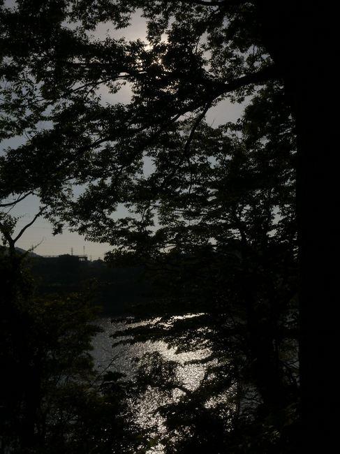 0640_津久井湖.JPG
