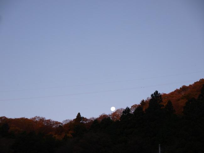 0644_西の空に沈みゆく月.JPG