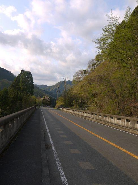 0645_静かな裏ヤビツ.JPG