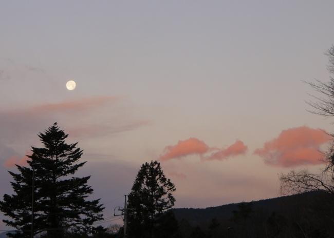 0659_西に沈む月.JPG