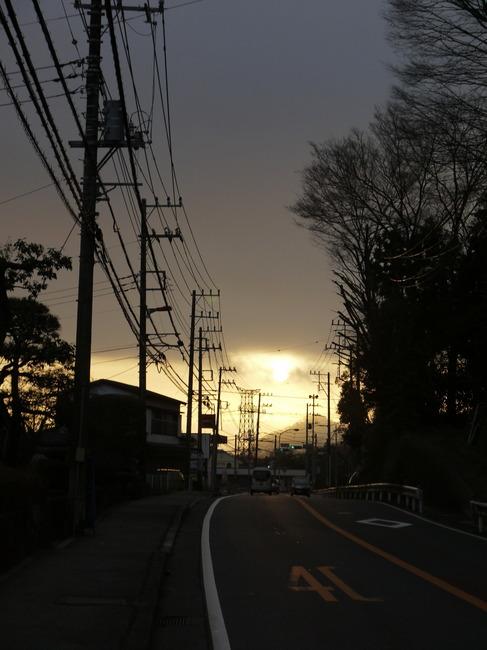 0705_朝日と電信柱.JPG