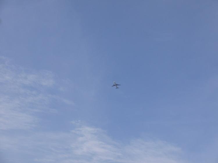 0708_羽田を飛び立つ飛行機.JPG