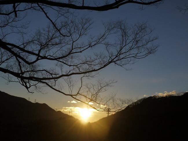 0711_朝の光の矢.JPG