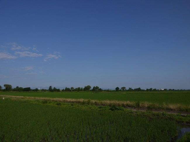 0713_アラサイと青い空.JPG