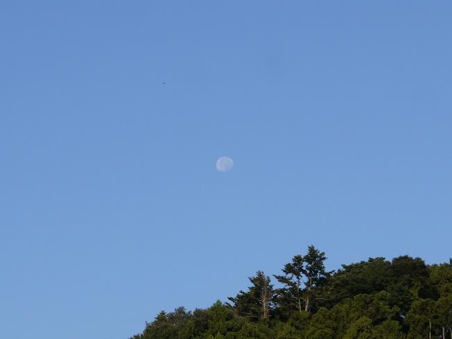 0713_下弦の月.JPG