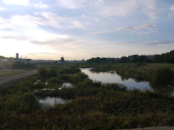 0715_鷺踊橋から定点撮影.JPG