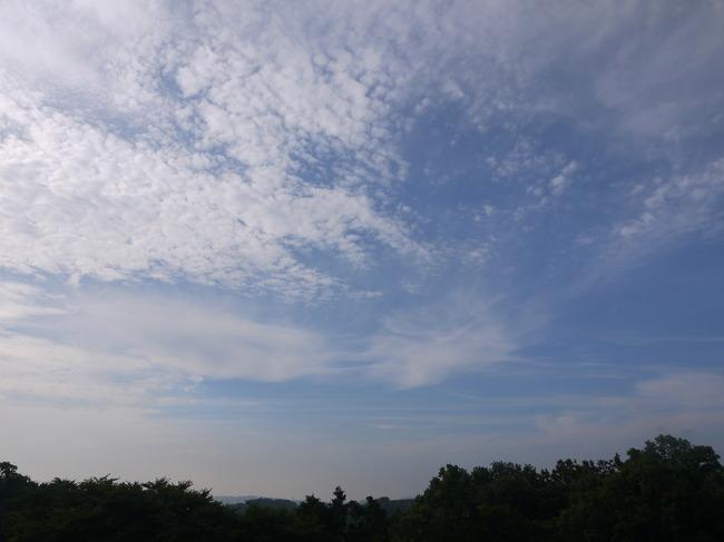 0723_最高地点より二宮に向かってダウンヒル開始.JPG