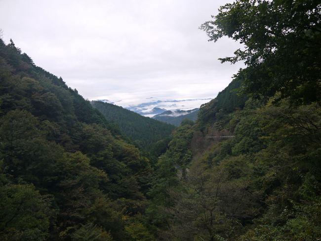 0733_唯一の富士山展望台.JPG