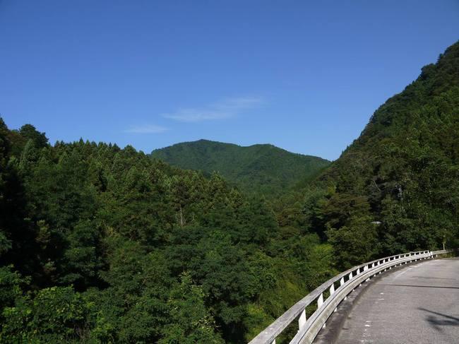 0734_もう一回走りたい県道507号線.JPG