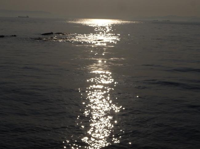 0735_観音崎奇麗な海面.JPG