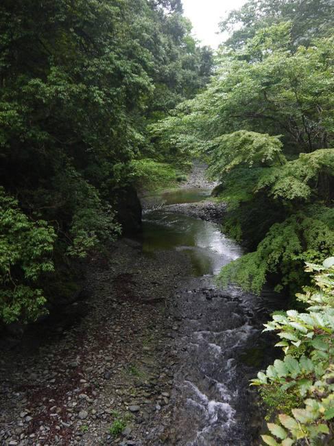 0738_緑深き秋川渓谷.JPG