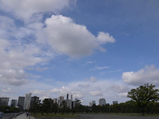 0740_皇居の新緑.JPG