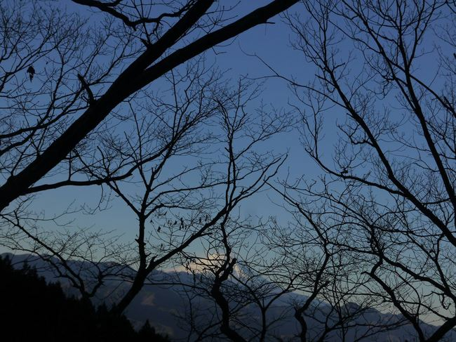0741_裏和田峠から富士山.JPG