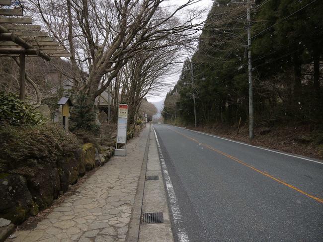 0753_雪が本降りの甘酒茶屋.JPG
