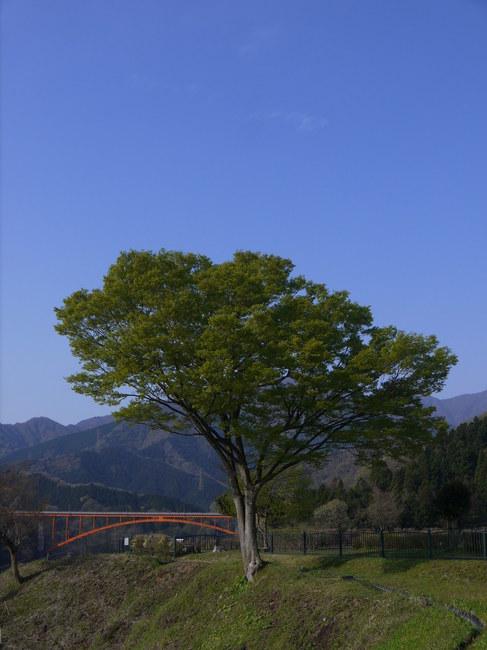 0756_宮が瀬湖.JPG