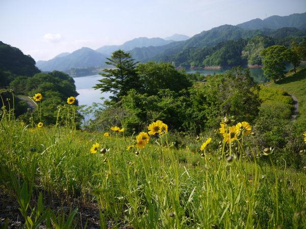 0756_宮が瀬湖遠望.JPG