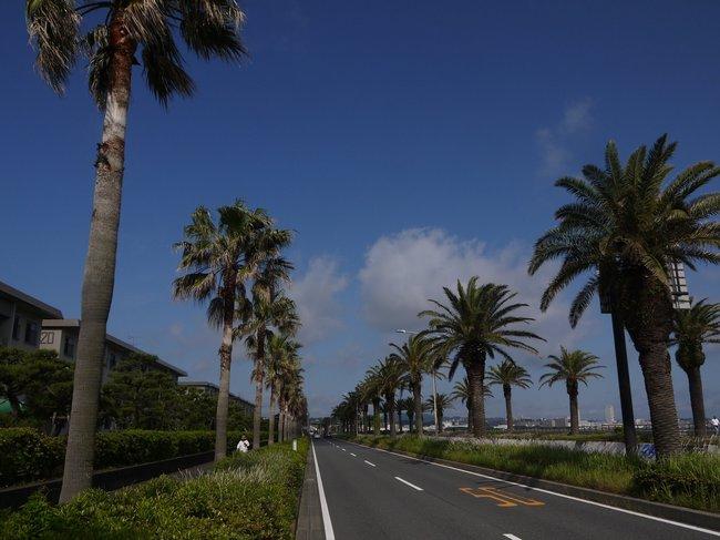 0804_馬堀海岸通.JPG