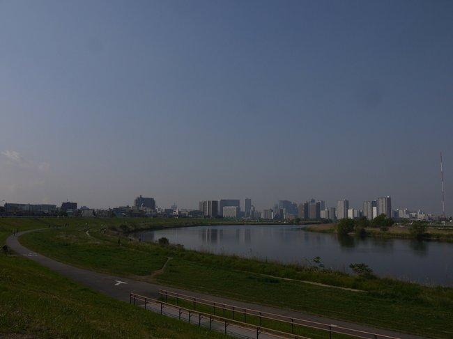 0805_えらく久しぶりの多摩サイ.JPG